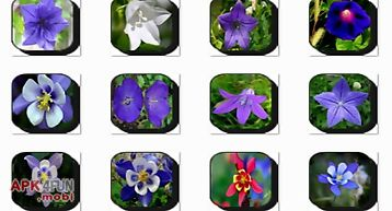 Bell flowers onet classic game