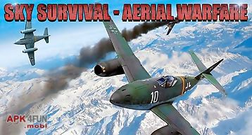 Sky survival: aerial warfare