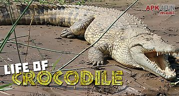 Life of crocodile - wild sim