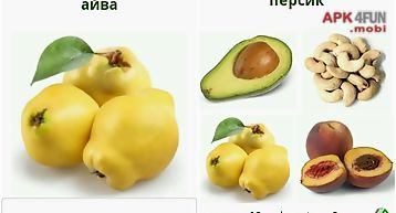 Russian in pictures food free