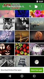 best wallpapers & backgrounds