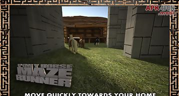 Pony horse maze run simulator