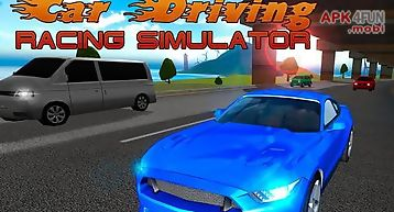 Car driving: racing simulator